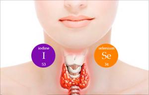 йод и селен для щитовидки